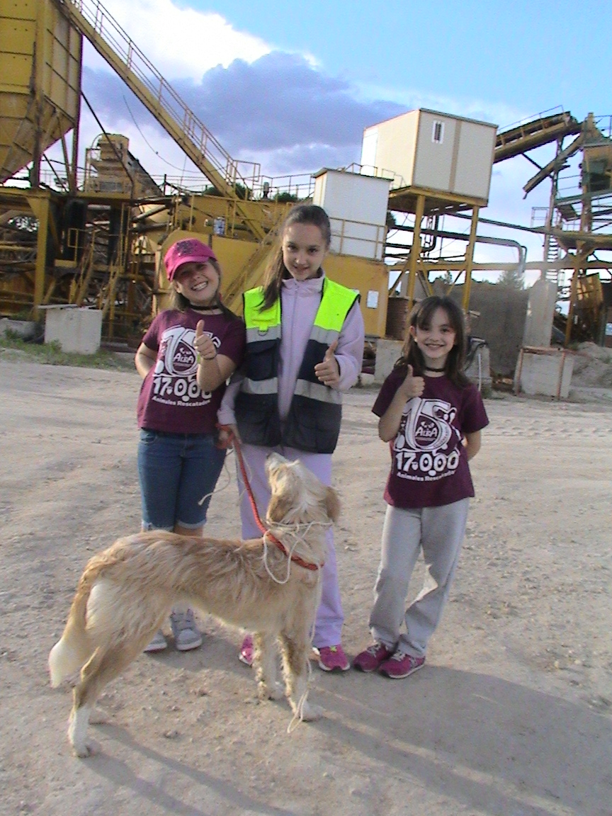 ¡ALBA KIDS FOR ANIMALS al rescate!