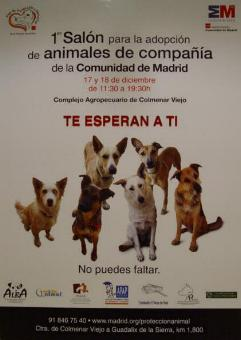 Primer Salón para la Adopción de Animales de Compañía en la Comunidad de Madrid