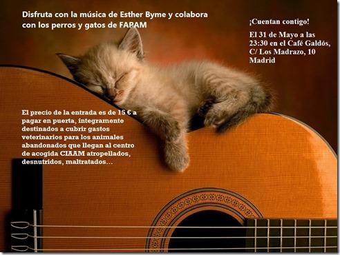concierto_fapam