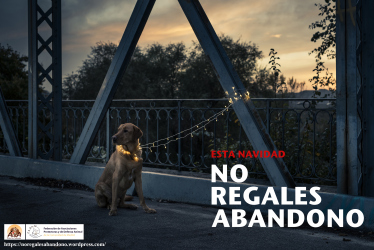 no-regales-abandono_5mb-1