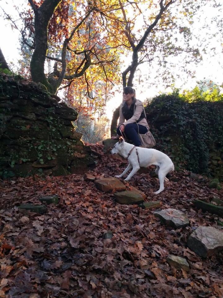 Homenaje a RUMBA, la perra que me salvó la vida
