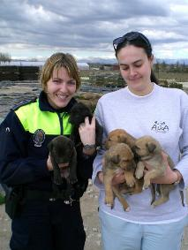 Die Zusammenarbeit zwischen ALBA, der Naturschutzpolizei (Seprona), der