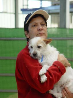 Das 1. Adoptions-Wochenende für Haustiere, organisiert und gesponsert von der Madrider Regierung