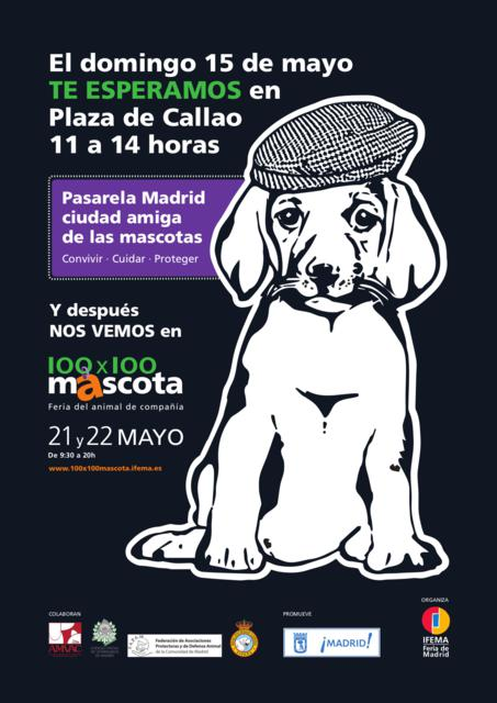 MADRID CIUDAD AMIGA DE LAS MASCOTAS