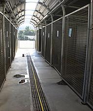 Alerta en el Centro de Protección Animal de Alcalá de Henares