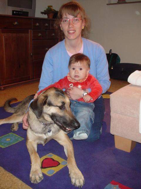 El beneficio de los animales en las terapias para niños