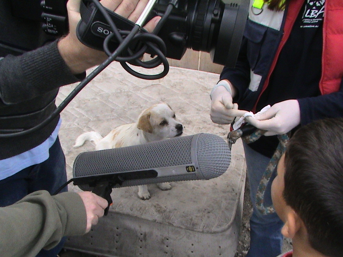 Estreno de Búsqueda Animal, el programa sobre ALBA, en El Mundo Digital