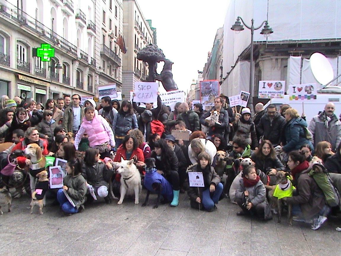 Manifestación contra la caza con galgos y otras razas