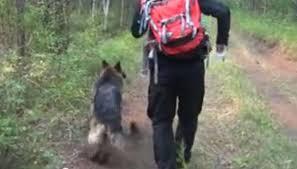 Sobrevive en los bosques de Siberia gracias a su perro