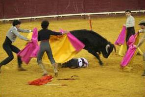 La ONU pide apartar a los niños de la tauromaquia