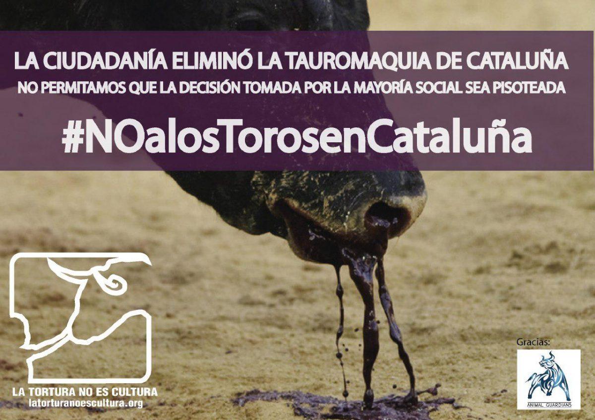 COMUNICADO DE LA PLATAFORMA LA TORTURA NO ES CULTURA (LTNEC) CON RESPECTO A LAS NOTICIAS DE ANULACIÓN DE LA LEY QUE PROHÍBE LOS TOROS EN CATALUÑA