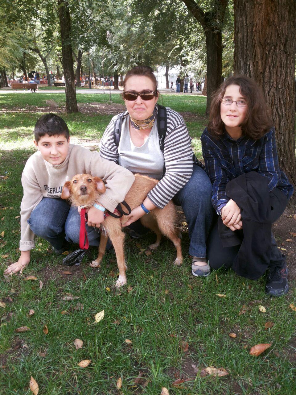 ALBA acude al Salón de la Adopción de Pinto